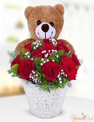 Ayıcıklı Kırmızı Güller