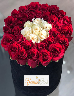 Siyah Kutuda Kırmızı Beyaz Grup Güller