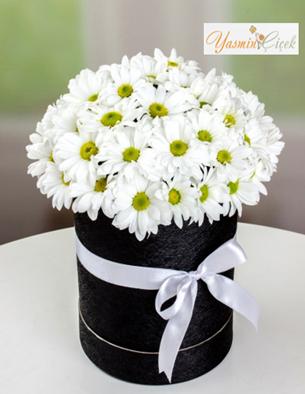 Yuvarlak Kutuda Kır Çiçekleri
